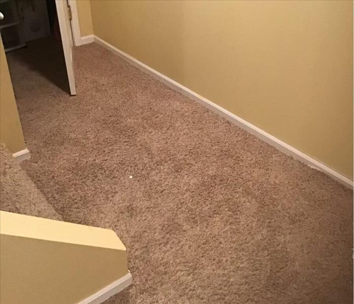 Wet brown carpet in a basement with tan walls.