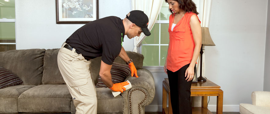 Plymouth, MN carpet upholstery cleaning