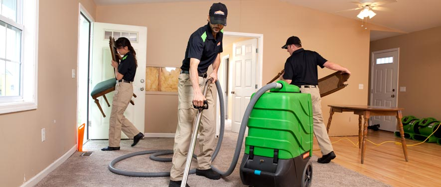 Plymouth, MN cleaning services